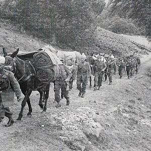 7th/9th Royal Scots with an Indian Army Mule Team in the Cairngorms